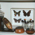 collections papillons, boîtes en bois, verrerie Brocante du Prieuré