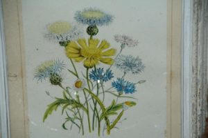 cadre de fleurs à la Brocante du Prieuré de Chichée, à deux pas de Chablis